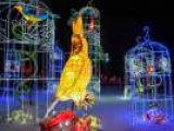 В Киеве пройдет первый фестиваль гигантских китайских фонарей