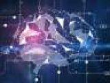 Мозг может предсказывать будущее